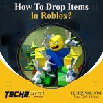 drop items in roblox
