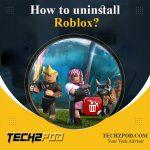 uninstall roblox